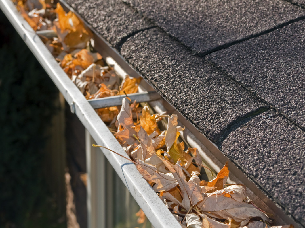 Searching for Complete Roofing Services in Antioch, CA?